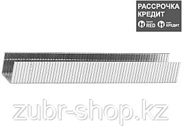 STAYER 10 мм скобы для степлера плоские тип 140, 1000 шт (31610-10)