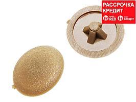 Заглушка декоративная под шуруп, цвет сосна, шлиц №2, 40шт, ЗУБР (4-308156-4)