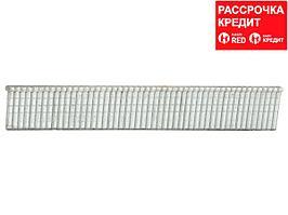 ЗУБР 16 мм гвозди для степлера тип 300, 1000 шт (31643-16)