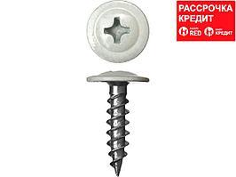 Саморезы ПШМ для листового металла, 19 х 4.2 мм, 450 шт, RAL-9003 белый, ЗУБР (300191-42-019-9003)