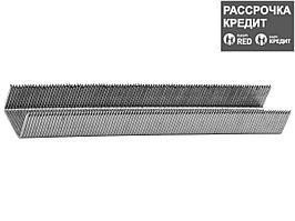 Скобы для степлера механического ЗУБР 31605-08_z01, ЭКСПЕРТ, тип 53, красные, ассиметр. DP-заточка, 8мм, 500шт.