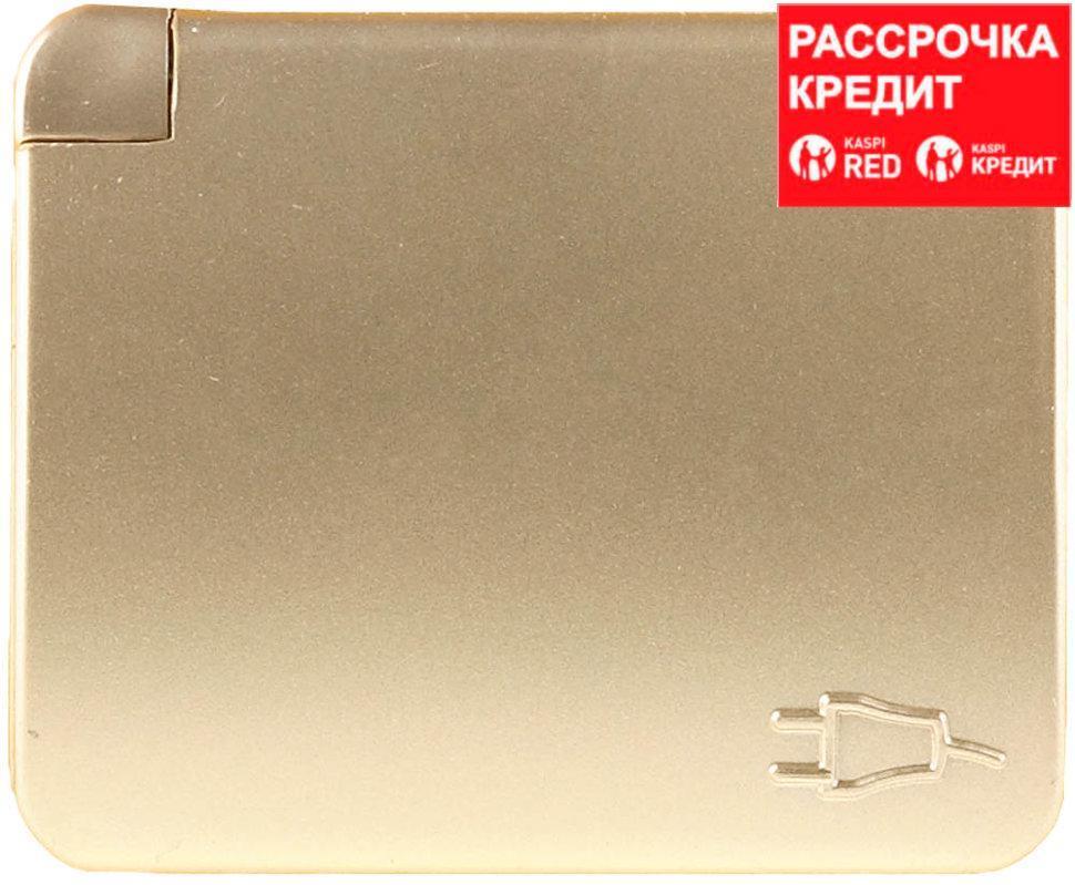 """Розетка СВЕТОЗАР """"ГАММА"""" с заземлением, одинарная с крышкой, без вставки и рамки, цвет золотой металлик, 16А/~250В (SV-54110-GM)"""