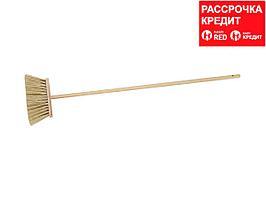 Метла ЗУБР с деревянной ручкой, ПЭТ, 120см, 24см (39231-24)