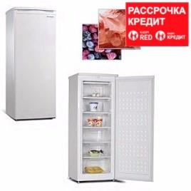 Морозильник вертикальный AFUD-208