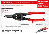 MIRAX Прямые ножницы по металлу, 250 мм (2306)