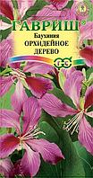 Баухиния пурпурная Орхидейное дерево (3 шт.)