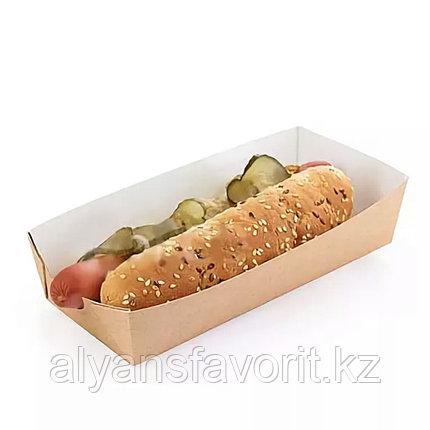 Упаковка  для хот-догов, картофеля фри ECO HD, размер:165*70*40 мм. РФ, фото 2