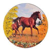 Магнит с рисунком «Лошадь с жеребенком» (вариант 2), змеевик 110х110мм.