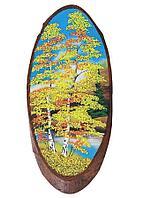 Картина на дереве 35х40см