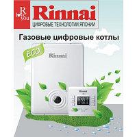 Газовый настенный котел Rinnai RB -167 RMF (18кВт)