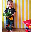 Наколенники штаны джоггеры зеленые, фото 2
