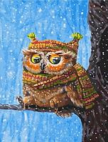 "Картина по номерам ""Совенок зимой"" 40х50 см"