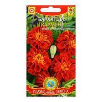 Семена цветов Бархатцы 'Кармен', красные с жёлтым, О, 45 шт (комплект из 10 шт.)
