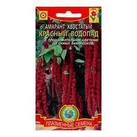 Семена цветов Амарант хвостатый 'Красный водопад', О, 0,3 г (комплект из 10 шт.)