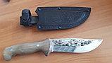Нож кизлярский Дрофа, фото 2