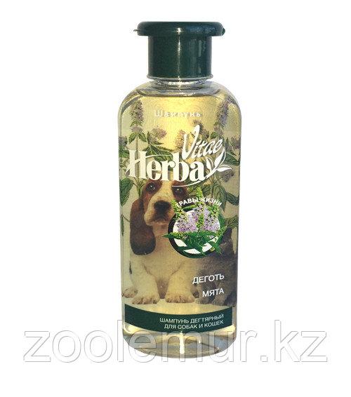 «Herba Vitae»  шампунь с экстрактами дегтя и мяты для собак и кошек