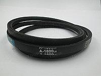 Ремень клиновой А1600 4301106300 (на СБ/4С 270LB50.LB75)