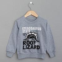 Толстовка для мальчика MINAKU Stegosaurus, рост 104-110 см, цвет серый