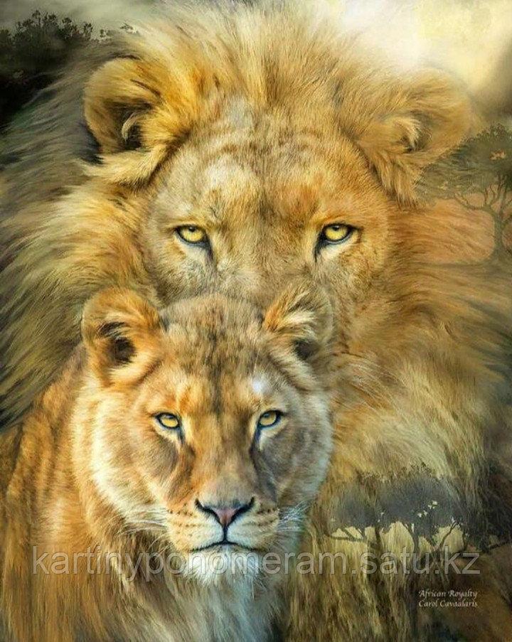 """Картины по номерам """"Пара львов"""""""