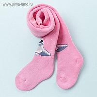 Колготки детские махровые «Тюлень», цвет розовый, рост 74-80