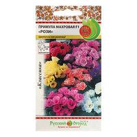 Семена цветов Примула 'Рози' F1, махровая, смесь, 5 шт (комплект из 10 шт.)