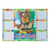 Расписание 'Собака' корзинка, А4 (комплект из 20 шт.)