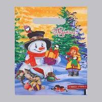 Пакет 'Зимние каникулы', полиэтиленовый с вырубной ручкой, 20 х 30 см, 30 мкм (комплект из 100 шт.)