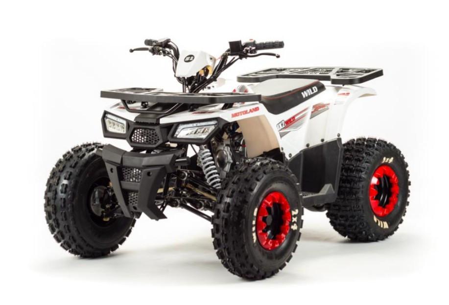 КВАДРОЦИКЛ ATV 130-8 CRUISER 77S - фото 1