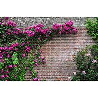 Фотобаннер, 250 × 150 см, с фотопечатью, «Кирпичная стена»