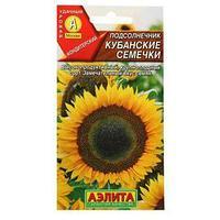 Семена Подсолнечник 'Кубанские семечки', 5 г (комплект из 10 шт.)