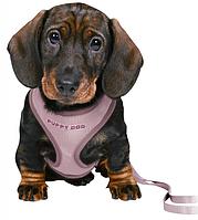 Шлейка и поводок для щенков, 26–34 cm/10 mm, 2.00 m, light lilac.