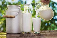 Маркетинговое исследование: «Исследование рынка молока и молочной продукции»