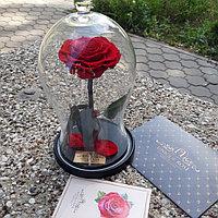 Роза в изогнутой колбе алая 33 см.