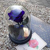 Роза в колбе стандарт фиолетовая 22 см