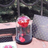 Мини роза в колбе Красная 17 см
