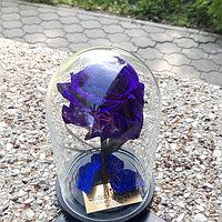Мини роза в колбе фиолетовая 17 см