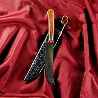 Нож Пчак Шархон средний, рукоять из текстолита (ёрма), гарда из олова с гравировкой