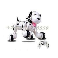Умная робот-собака