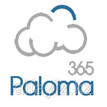 Система учета Paloma 365