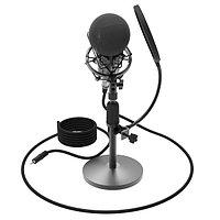Студийный микрофон Ritmix RDM-175 (Black)