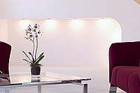 Кашпо для орхидеи Adel (HobbyFlower - Испания)