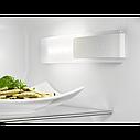 Холодильник с морозильной камерой 600 PRO 184.5 см A++ FrostFree, фото 3