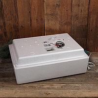 Инкубатор бытовой, на 104 яиц, автоматический переворот, цифровой термометр, 220 В