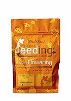 Powder Feeding Short Flowering 1kg