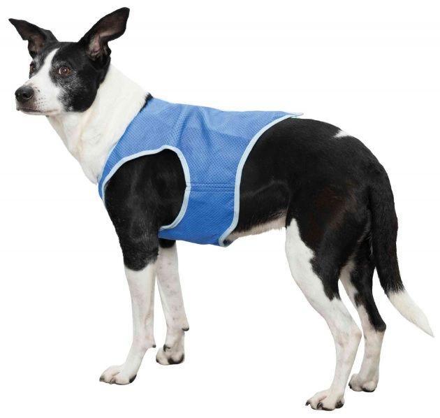 """Шлейка. """"Trixie"""".Охлаждающая шлейка для собак, из абсорбента ПВА, р-р XL: 40 cm, цвет голубой"""