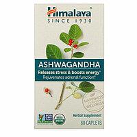 Ашваганда, 60 капсуловидных таблеток, фото 1
