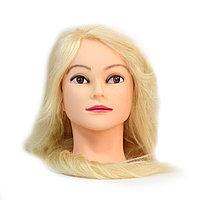 Болванка учебная для парикмахера ТМ-005 100% натур. волосы 60 см (блондин) №88105(2)