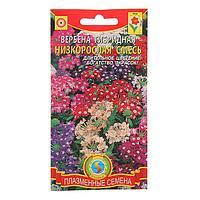 Семена цветов Вербена гибридная, низкорослая смесь, О, 0,15 г