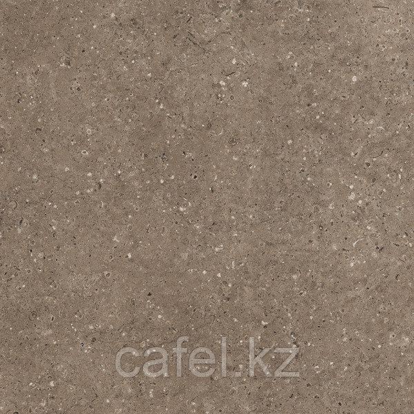 Керамогранит 60х60 G214 Arkaim brown