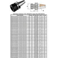 Патрон Цанговый с хвостовиком 7:24 - BT50х100 (MAS403) c ЧПУ (М24х3.0) под цанги ЕR25 (BT50-ER25-100)